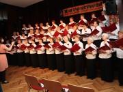 XIII Festiwal Chórów, Kabaretów i Zespołów Seniora